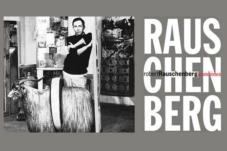 The Robert Rauschenberg Combines
